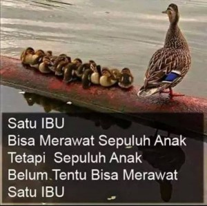 Seorang ibu bisa merawat 10 anak. Tapi 10 anak belum tentu bisa merawat seorang ibu